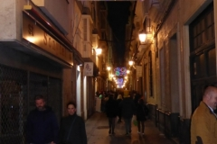 A street of Cadiz at carnival time late narrow and humming with people everywhere.