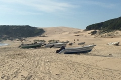 The dune at Bolonia, as to can see a theme going here we really liked it here.
