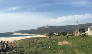 Back to Bolonia