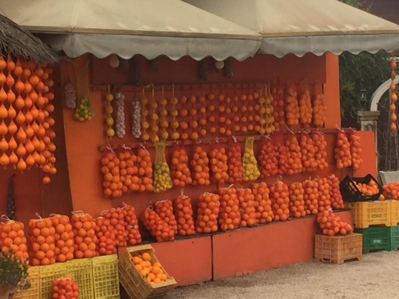 Valencian oranges lots of them.